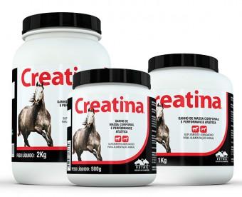 Creatina Vetnil 2Kg  - Farmácia do Cavalo