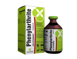 Phenylarthrite 100ml  - Farmácia do Cavalo