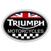 Adesivo Triumph - Unidade