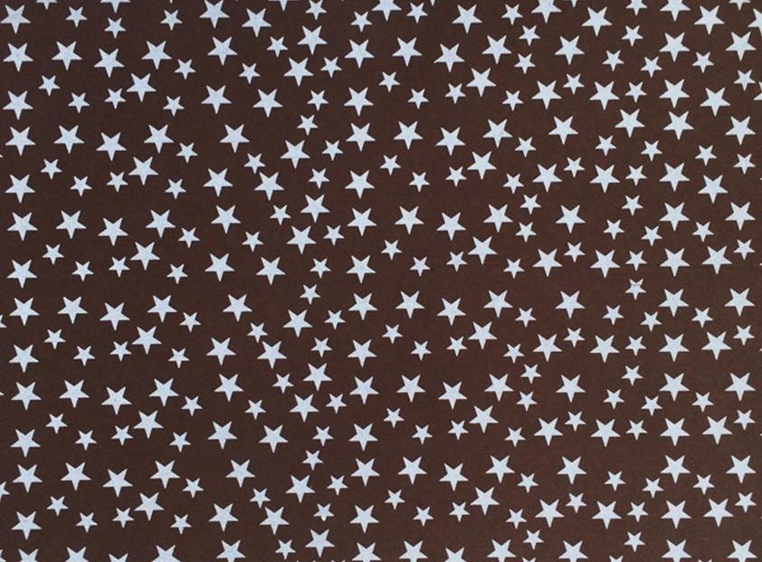 Placa Estrela Cheia Branca Fundo Marrom 40x60cm  - Brindes Visão loja