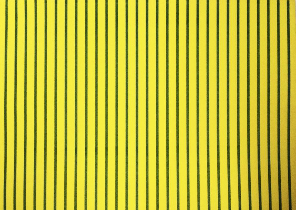 Placa Listrada Verde Fundo Amarelo 40x60cm  -