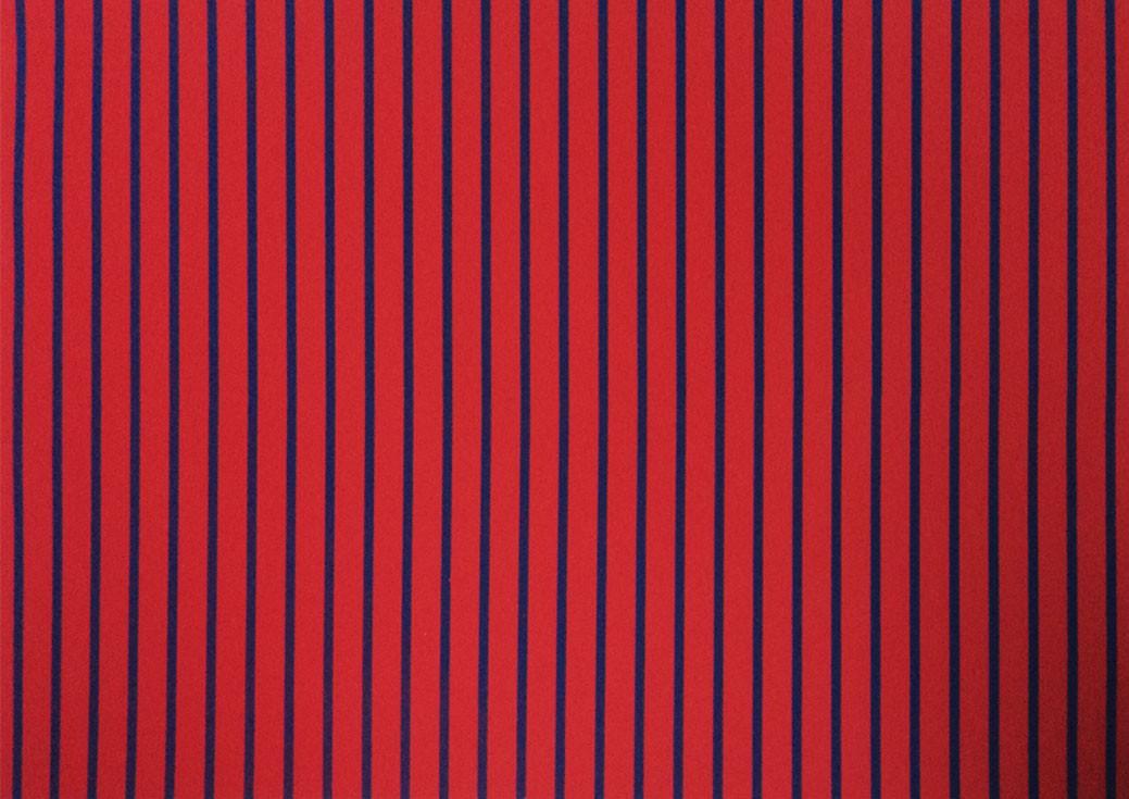 Placa Listrada Azul Fundo Vermelho 40x60cm  -