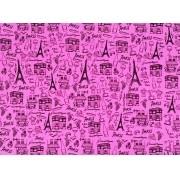 Placa Paris Preto Fundo Rosa 40x60cm