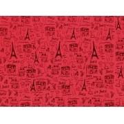 Placa Paris Preto Fundo Vermelho 40x60cm