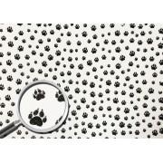 Placa Pata de Gato Preta Fundo Branco 40x60cm