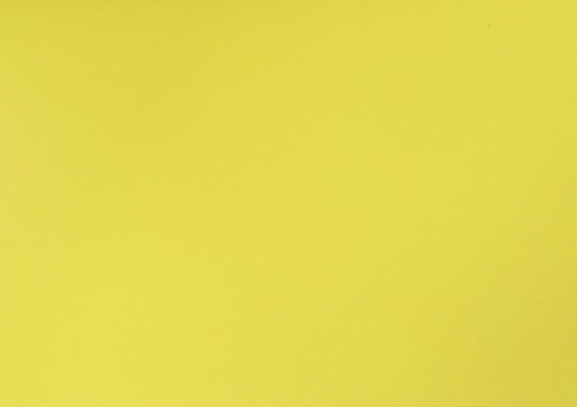 Placa Lisa Amarela  40x60cm  -