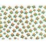 Placa Flor(8) Laranja e Verde Fundo Branco 40x60cm