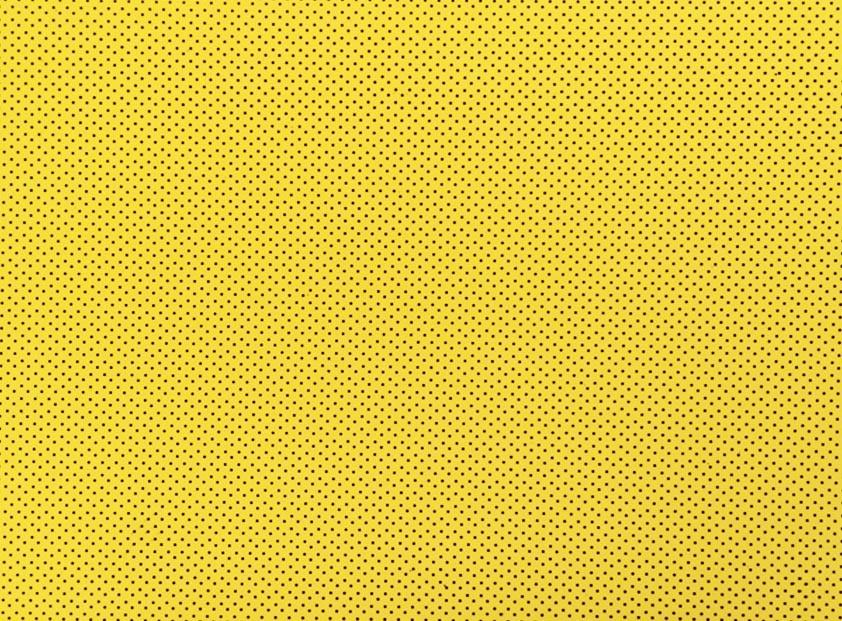 Placa de Bolinhas Pequena de 1mm Preta Fundo Amarelo 40x60cm  -