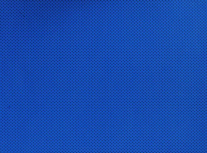Placa de Bolinhas Pequena de 1mm Preto Fundo Azul Royal  40x60cm  -
