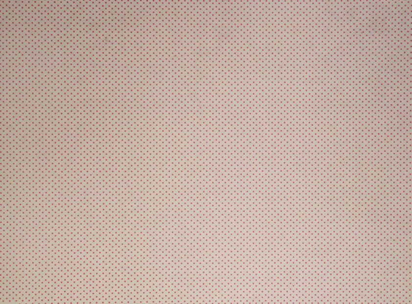 Placa de Bolinhas Pequena de 1mm Vermelha Fundo Branco 40x60cm  -