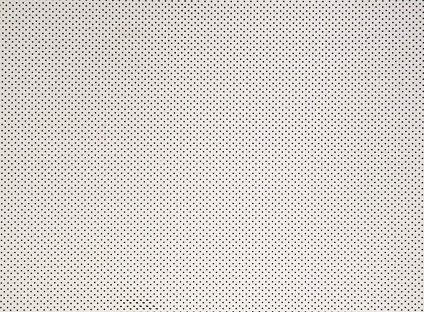 Placa de Bolinhas Pequena de 1mm Preta Fundo Branco 40x60cm  -
