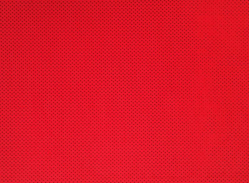 Placa de Bolinhas Pequena de 1mm Preta Fundo Vermelho 40x60cm  -
