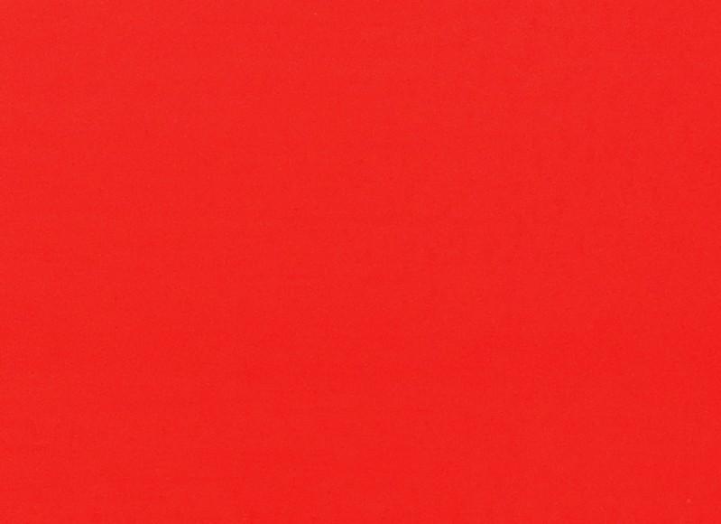 Placa Neon Vermelha  40x60cm  - Brindes Visão loja