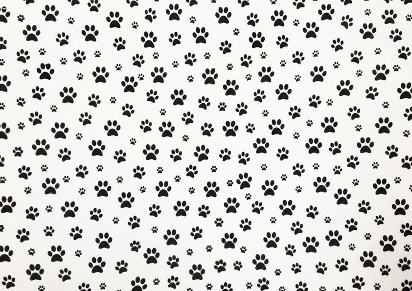 Placa Pata de Cachorro Preto Fundo Branco 40x60cm  -