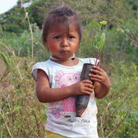 Guarani Kaiowá I   - Cesta Incentivo - Cesta Básica e Cesta de Natal
