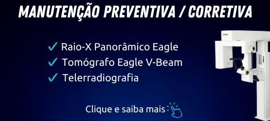 manutenção rx eagle