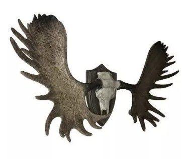 Crânio Galhada Cabeça Troféu De Moose Alce Veado P/ Parede
