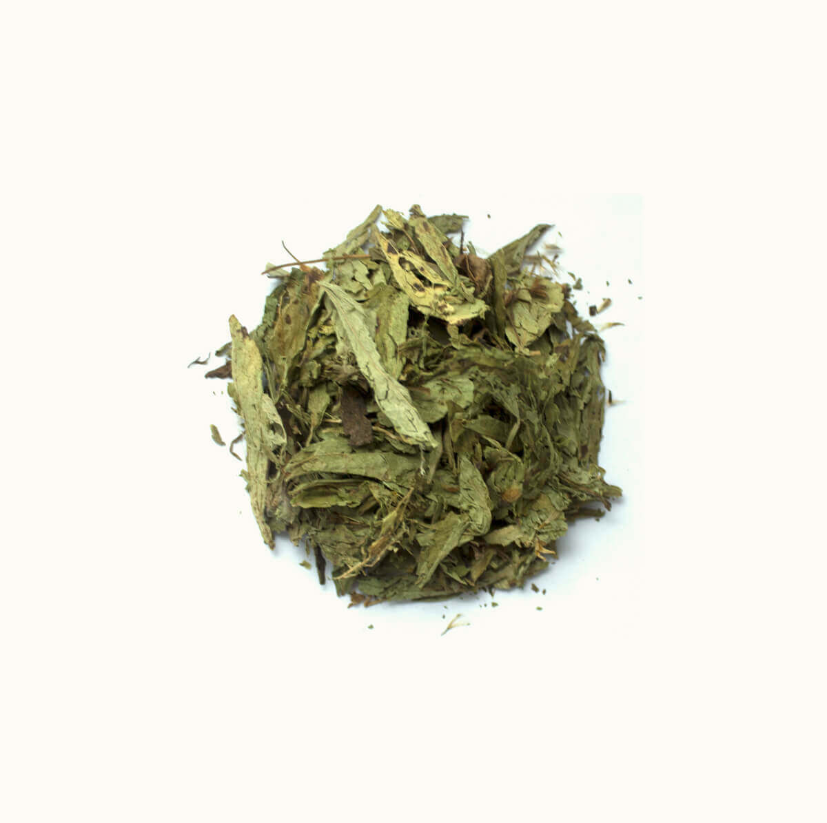 STEVIA - Stevia rebaudiana - 30g