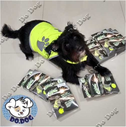 Colete de Segurança  - Do Dog