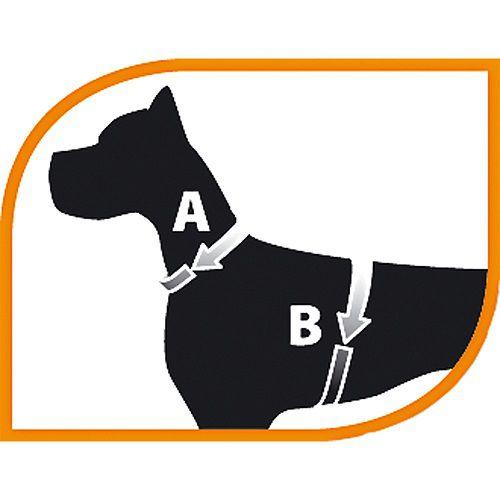Peitoral Agila Fluo   - Boutique Do Dog