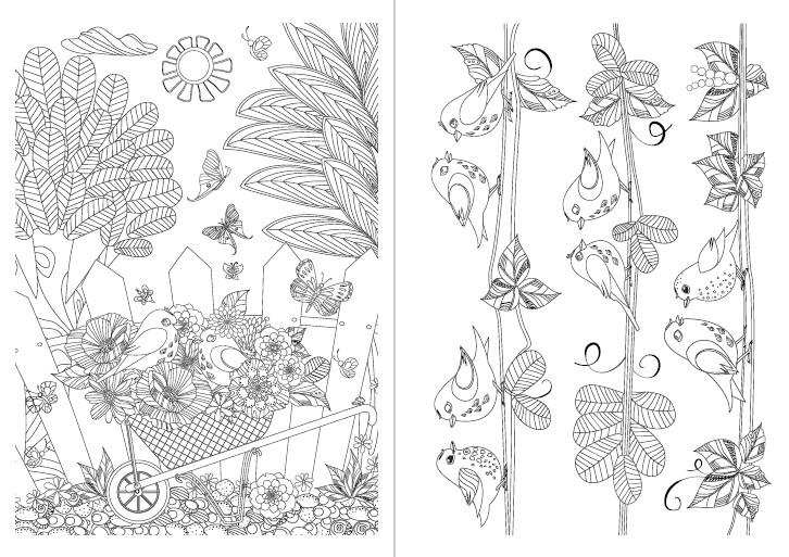 Pintar e Colorir Adultos Ed. 28 - Pássaros - PRODUTO DIGITAL (PDF)