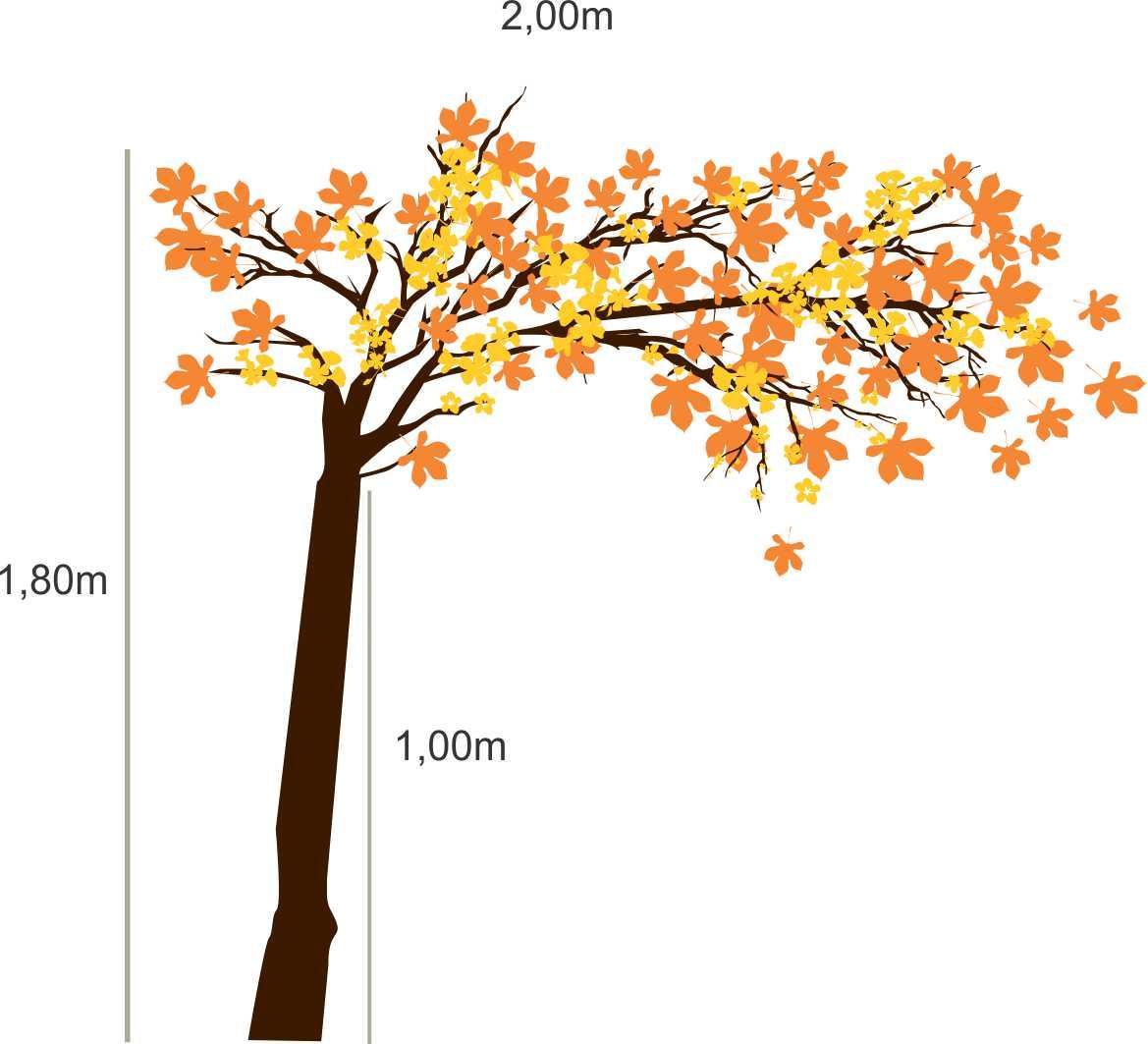 008 - Arvore  Adesivo Decorativo - Novas medidas Outono  - Fac Signs