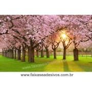 Decoração Cerejeiras ao Por do Sol (P-M-G-EG)