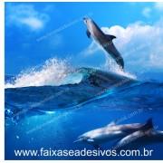 Golfinhos painel para fundo de vitrine 1,50m