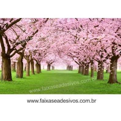 Caminho das cerejeiras foto - Decorativo de Parede  - Fac Signs