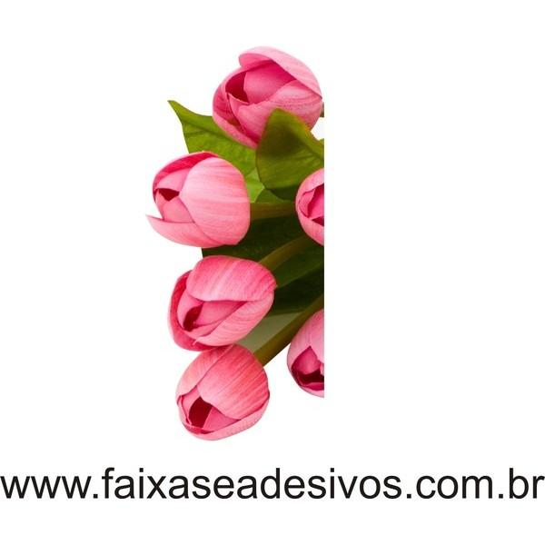 Tulipas 3 adesivos 77x36cm  - FAC Signs Impressão Digital