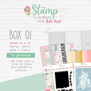 Box I Stamp Club Brasil -Juju Scrapbook