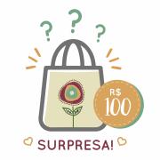 Sacola Surpresa - 100