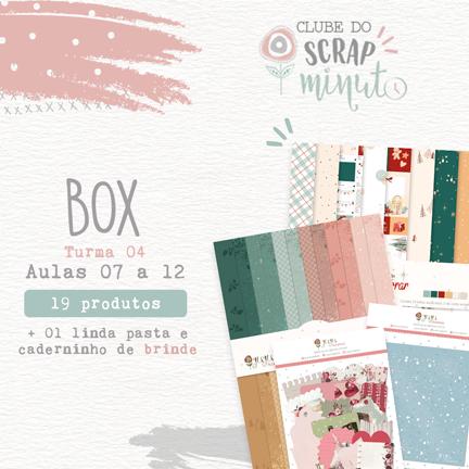 Box II - Turma 4 Clube do Scrap Minuto - Juju Scrapbook  - JuJu Scrapbook
