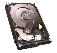 Hard Disk 1TB Sata III 3,5 64MB ST1000VM002 Series Video - Seagate
