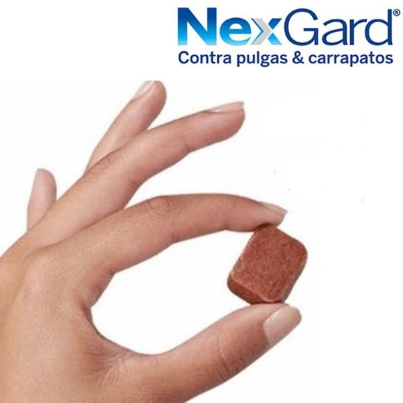 NEXGARD ANTIPULGAS E CARRAPATOS DE CÃES 2 A 4KG  - Raça Virtual