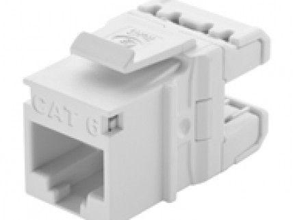 Conector Fêmea / Keystone RJ-45 CAT6 Networkbox