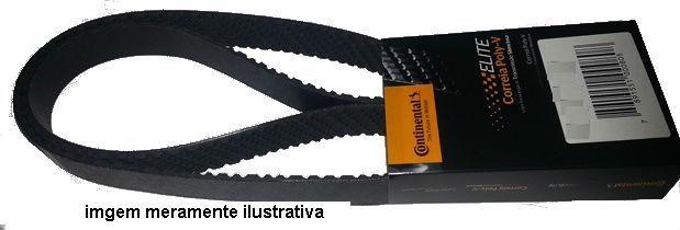Correia 8PK 1446  - Onitruck