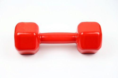 Halter Sextavado Emborrachado - Vermelho - 1 Kg  - Loja Portal
