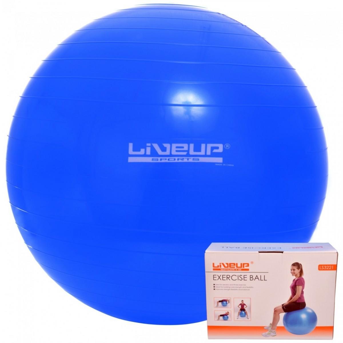 Bola Suíça Pilates Yoga 65cm com Bomba Ziva Preto - MadeiraMadeira 88c8121079918