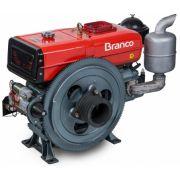 Motor Diesel Branco BDA 18.0TE Partida Elétrica