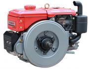 Motor Diesel Yanmar TF160R Partida Manivela 16hp