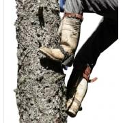 Espora De Bico Completa Para Poste De Madeira Ou Árvores