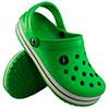 Verde Bandeira-3539