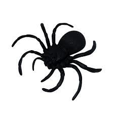 Aranha caranguejeira - Plástico