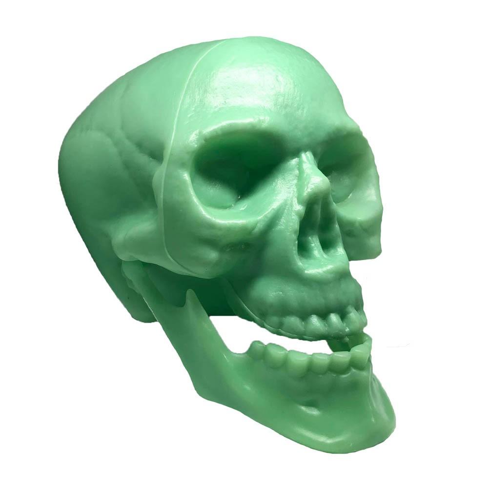 Crânio de Plástico Fluorescente