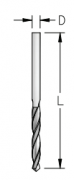 WPW - BROCA HSS RETIFICADA - D2MM (49L)
