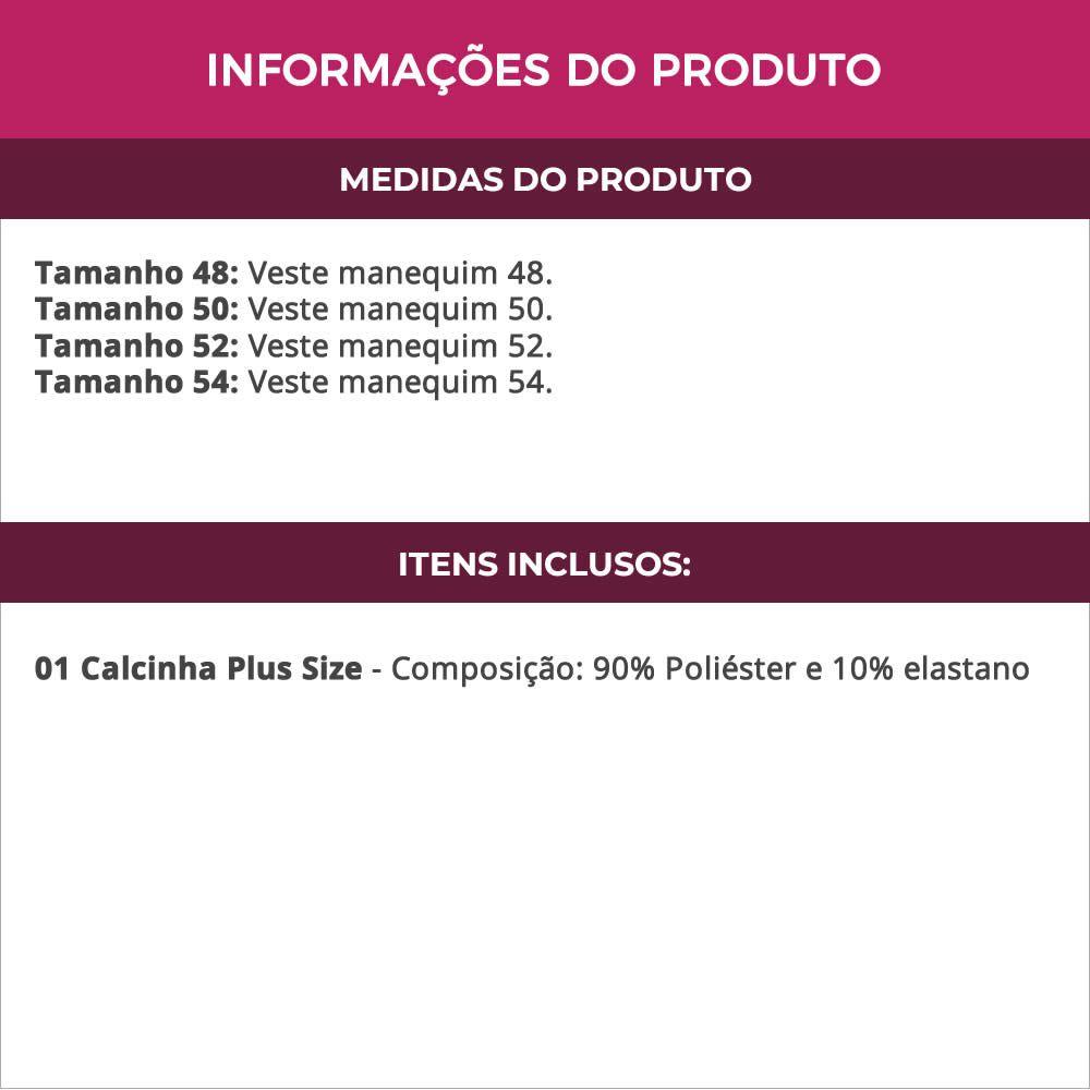 Calcinha Plus Size em Microfibra e Renda Elana - MF1440