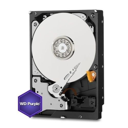 HD WD Purple 3.5 1TB  - Rei dos HDs