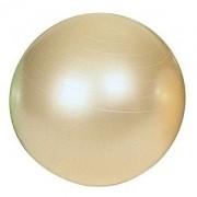 Bola Bobath Fit Ball  Gymnic 65cm Perolada