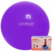 Bola Suiça  55cm - Liveup Sports